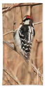 Downy Woodpecker In Brush Beach Towel