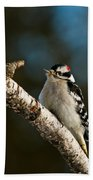 Downy Woodpecker Pictures 25 Beach Towel