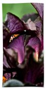 Dracula's Flower Beach Towel