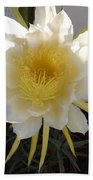 Dragon Fruit Bloom In The Morning Beach Towel