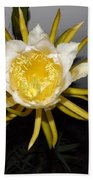 Dragon Fruit Blooming At Night I Beach Towel