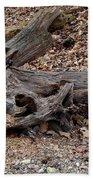 Dragon Skull Beach Towel