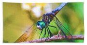 Dragonfly Art - A Thorny Situation Beach Towel