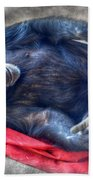 Dreaming Of Bananas Chimpanzee Beach Towel