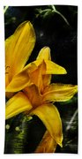 Dreams Of A Day Lily Beach Towel