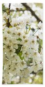 Dreamy White Cherry Blossoms - Impressions Of Spring Beach Towel