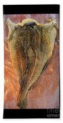 Dried Salted Codfish Back Beach Towel