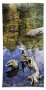 Driftwood And Reflections Beach Towel