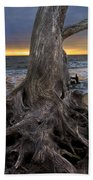 Driftwood On Jekyll Island Beach Towel by Debra and Dave Vanderlaan