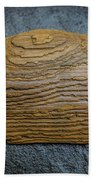 Driftwood On Slate Beach Towel