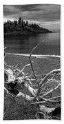 Driftwood On The Shore Near Wawa Ontario Canada Beach Towel