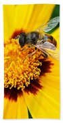 Drone Bee Beach Towel