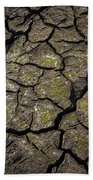 Drought Beach Towel