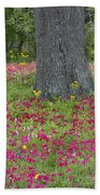 Drummonds Phlox And Crown Tickweed Central Texas Beach Towel