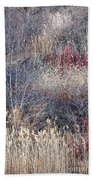 Dry Grasses And Bare Trees Beach Towel