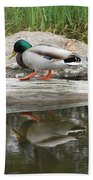Duck Duck Beach Towel