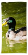 Duck In The Park Beach Towel