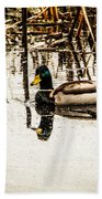 Duck On The Water Beach Towel