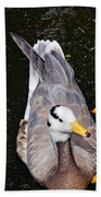 Duck Portrait Beach Towel