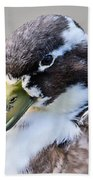 Duck Portrait Beach Towel