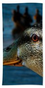 Duck Watching Ducks Beach Towel