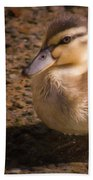 Duckling Beach Towel