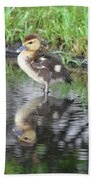 Duckling With Reflection Beach Towel