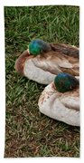 Ducks At Rest Beach Towel