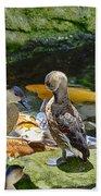 Ducks At The Koi Pond Beach Towel