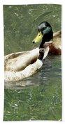 Ducks Beach Towel