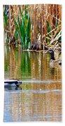 Ducks In A Marsh Beach Towel