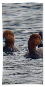 Ducks In Pond Beach Towel