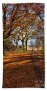Dunham Massey Beach Towel