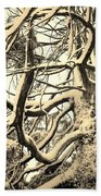 Snow Dusted Limbs Beach Towel
