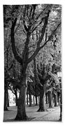 Dutch City Trees - Black And White Beach Towel