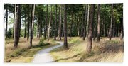 Dutch Country Bicycle Path Beach Towel