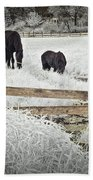 Dutch Friesian Horses Behind A Wooden Fence In A Pasture Beach Towel