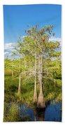 Dwarf Cypress Trees In A Field Beach Sheet
