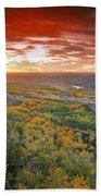 D.wiggett View Of Dry Island, Buffalo Beach Towel
