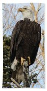 Eagle 1991a Beach Towel