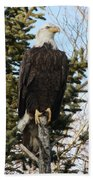 Eagle 3 Beach Towel