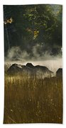 Eagle Lake Sunrise Beach Towel