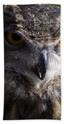 Eagle Owl 2 Beach Towel