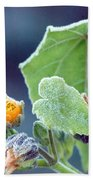 Early Morning Frost Beach Towel