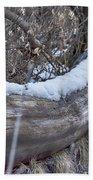 Early Snow Beach Towel