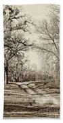 Early Winter Beach Towel