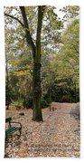 Earth Day Special - Bench In The Park Beach Towel