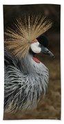 East African Crowned Crane Painterly Beach Towel