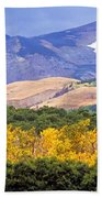 East Glacier Fall Beach Towel