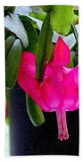 Easter Cactus Digtial Painting Square Beach Towel